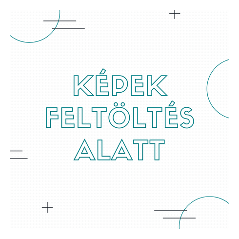 Samsung Galaxy S10 LED cover hátlap, Fekete